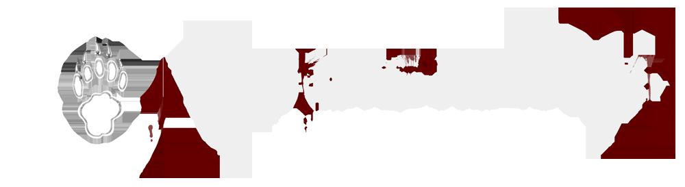 Badgers-Records.com